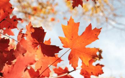 Tips voor herfst in huis